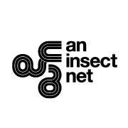 an_insect_net